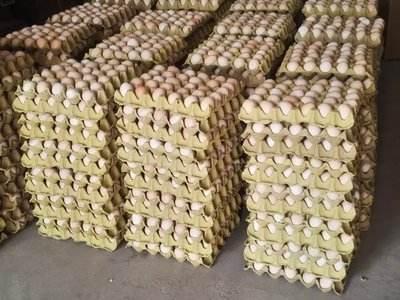 市场监管总局:佳宝陈皮、绿科禽蛋鲜鸡蛋再登黑榜